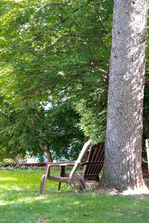 Two chairs under a shade tree Reklamní fotografie