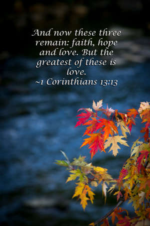 Beautiful autumn  leaves with scripture