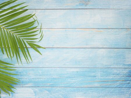 Tropical palm leaves on light blue background. Summer beach concept, top view, space for text.