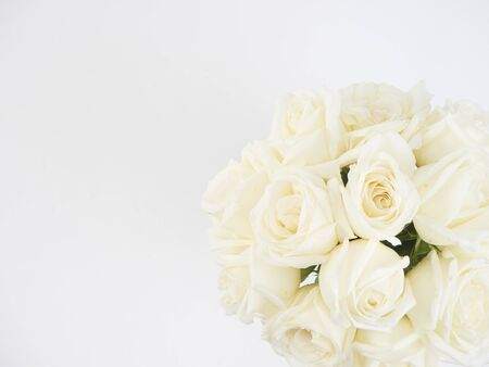 Valentines day background, white roses on white background. For card design and wedding.