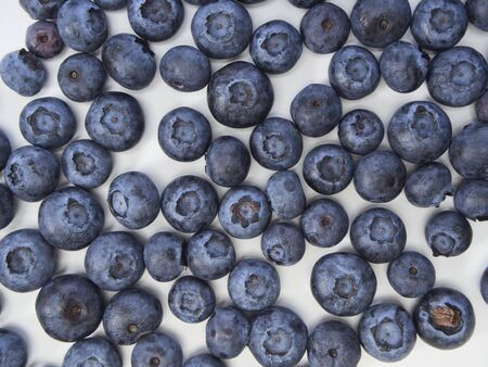 Blueberry frame on white background. Healthy food design. Top view, space for text 写真素材