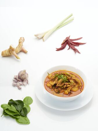 Panang chicken curry in white bowl with spices, spicy ingredients, galangal, chilli, lemongrass, kaffir lime leaves and garlic on white background. Reklamní fotografie