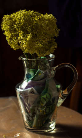 yellow dry flowers in a vase where instead of water of money. flowers grow out of money. vase floor money Euro dollars 写真素材
