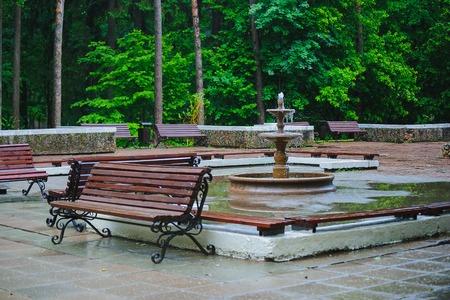 green park: green Park after a summer rain a