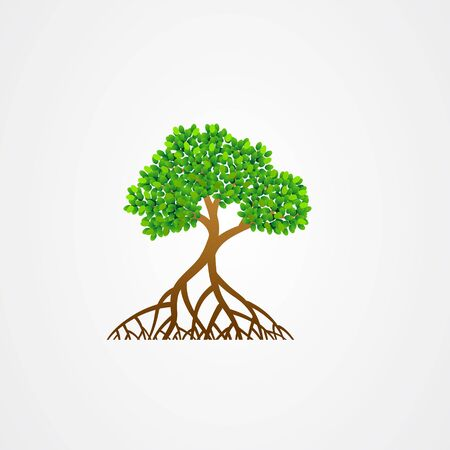 Mangrove tree with roots and green leaves vector illustration.