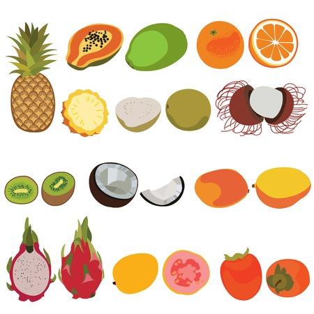 rambutan: Tropic fruit isolated vector set illustration. Flat style vector set of fruits. Pineapple, papaya, orange, guava, rambutan, kiwi, coconut, mango, dragon fruit, persimmon fruits vector set.