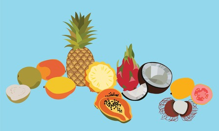 Tropic fruits isolated vector set. Fruits set. Isolated fruits. Different fruits. Isolated fruits. Tropical fruits illustration. Flat fruits set. Exotic fruits.Isolated fruits on blue background.Fruit Illustration
