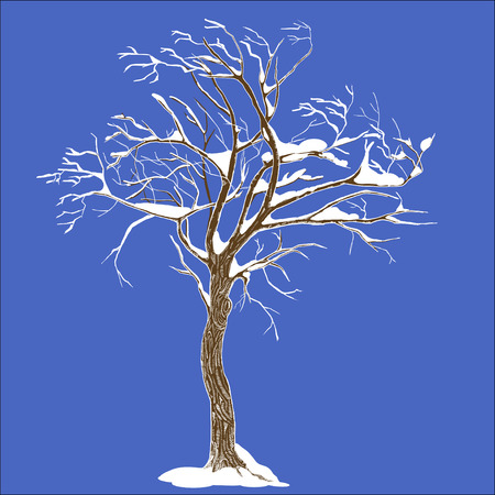 Isolated winter tree with snow illustration with detailed drawing bark for large wide-format printing