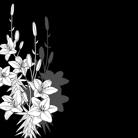 Black lily background