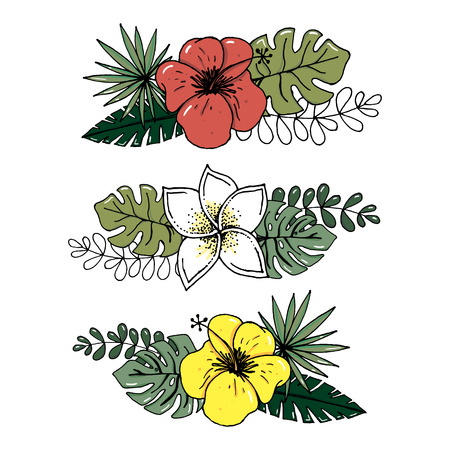 Vector realistic illustration set of tropical leaves and flowers isolated on white background. Highly detailed colorful plant collection. Botanical elements for cosmetics, spa, beauty care Illustration