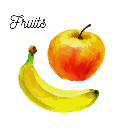 Red apple and yellow banana .fruit illustration isolated on a white background
