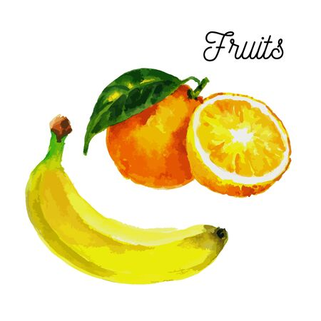 Banana orange for lifestyle design. Vector isolated illustration. Nature