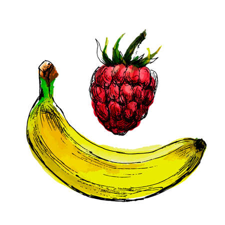 vector of raspberries and bananas. Hand-drawn and colored illustration Ilustrace