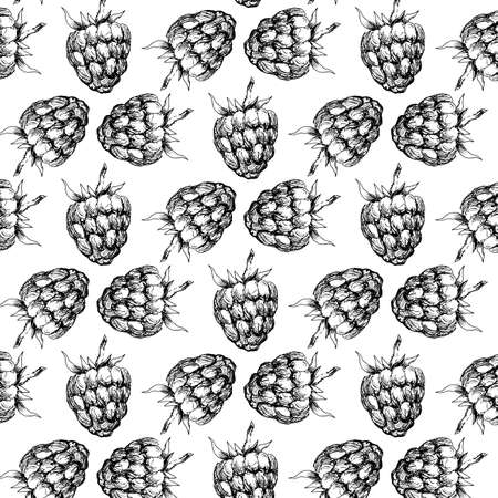 Raspberry seamless pattern for your design. Vector illustration 免版税图像