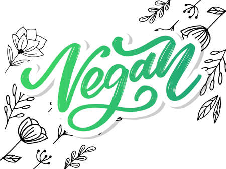 Vector illustration, food design. Handwritten lettering for restaurant, cafe menu. Vector elements for labels, logos, badges, stickers or icons. Calligraphic and typographic collection