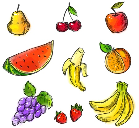Colorful Fruits Collection created from original hand draw Vector