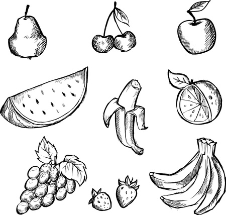 Set of sketches of opular fruits Vector