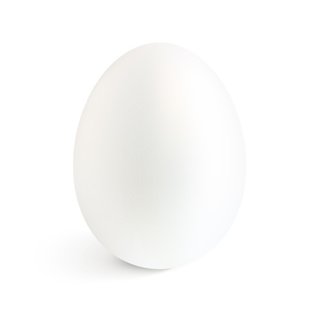 egg yolk: White isolated vector realistic egg with shadow