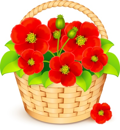 Vector basket with beautiful red flowers