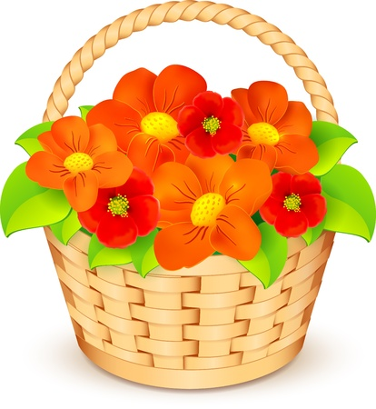 flower baskets: Vector basket with beautiful flowers Illustration