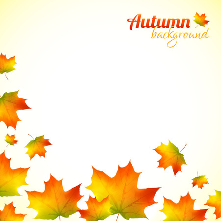 falling leaves: Autumn falling down orange foliage vector background