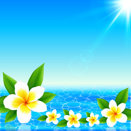 frangipani: White tropical flowers on shining ocean background, vector illustration Illustration