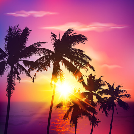 beach sunset: Palm silhouettes on violet colors summer sunset Illustration