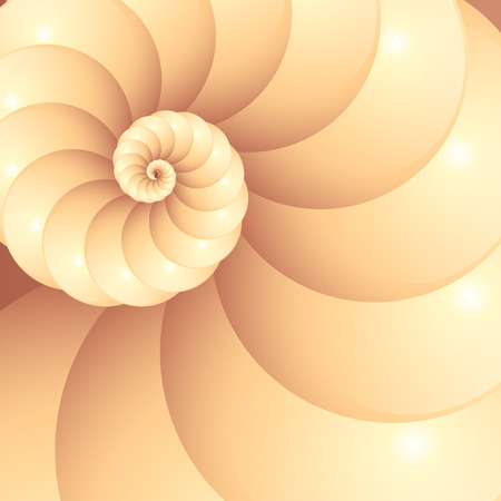 nautilus shell: Abstract vector seashell background Illustration