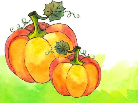 gourd: Watercolor painted vector orange pumpkins