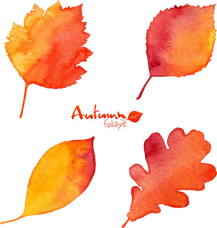 fall colors: Autumn orange watercolor painted foliage set Stock Photo