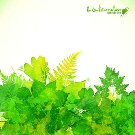 Green summer watercolor painted foliage vector background Vector