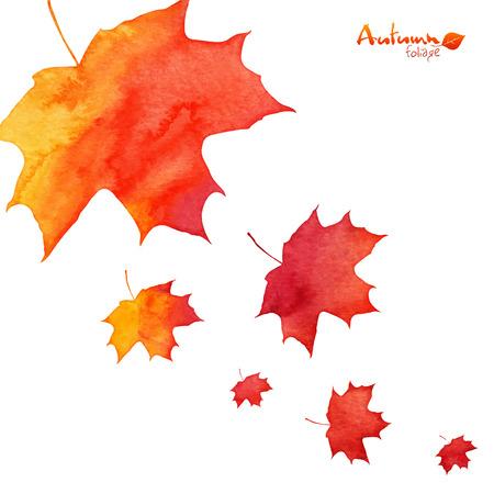Акварель окрашены в оранжевый цвет кленовые листья осенью