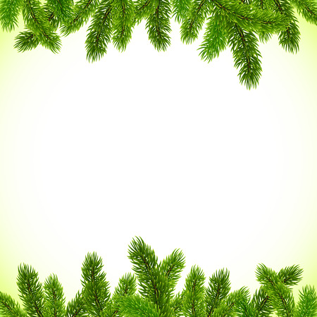 pine boughs: Green Christmas tree branches vector frame Illustration