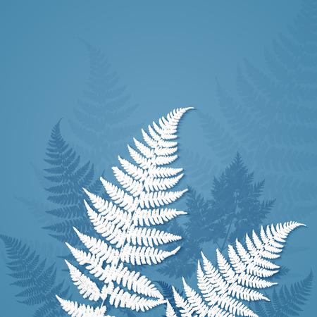 helechos: Blanca helecho papel hojas sobre fondo azul