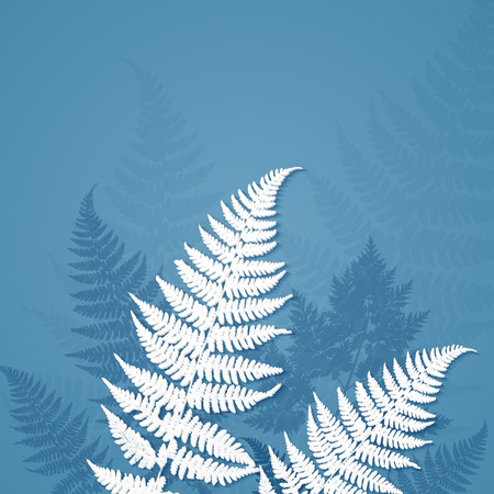 fern leaf: White paper fern leaves on blue background