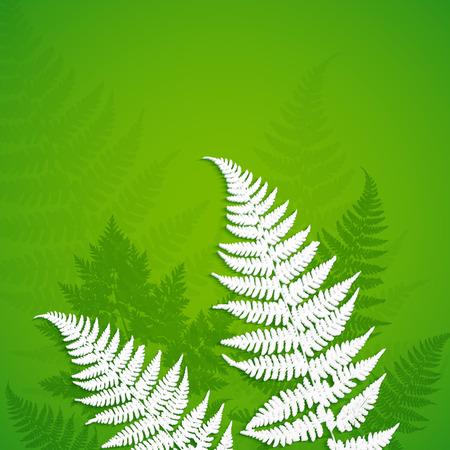 fern: White paper fern leaves on green background