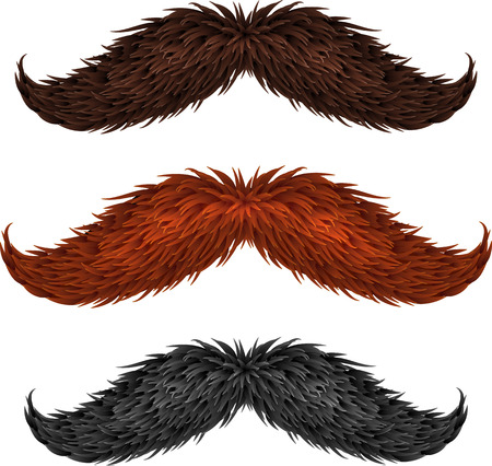 black head and moustache: Brown, black and ginger isolated mustaches set Illustration