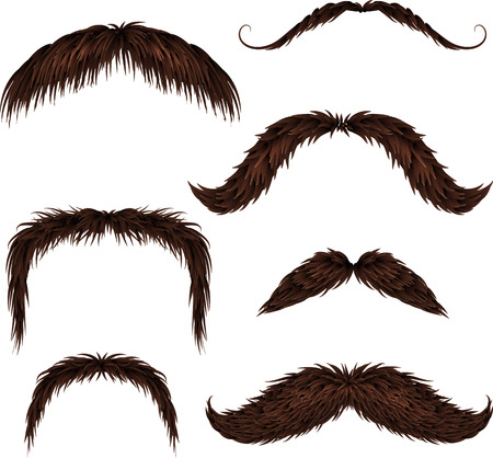 black head and moustache: Brown different style isolated mustaches set