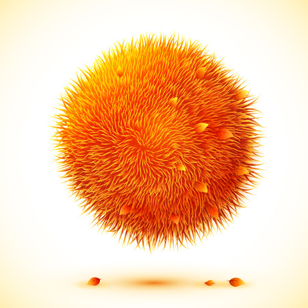 fire ball: Fluffy orange  ball with autumn leaves