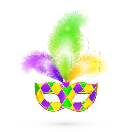 Mardi Gras traditional colors vector mask