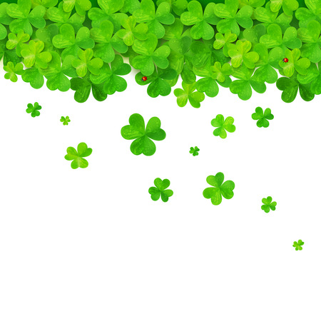 Vector green falling clovers on white background