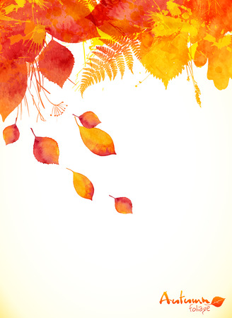 autumn colors: Red watercolor autumn leaves fall leaflet background