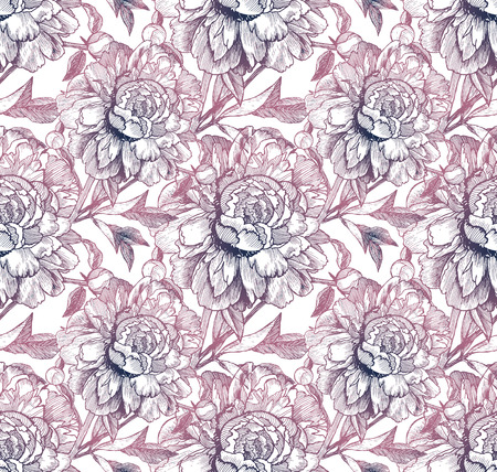 peon: Vintage style vector sketched peonies seamless pattern Illustration