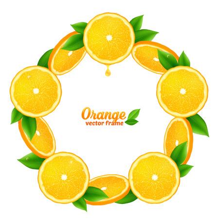 orange fruit: Tasty orange juicy slices with leaves vector round frame