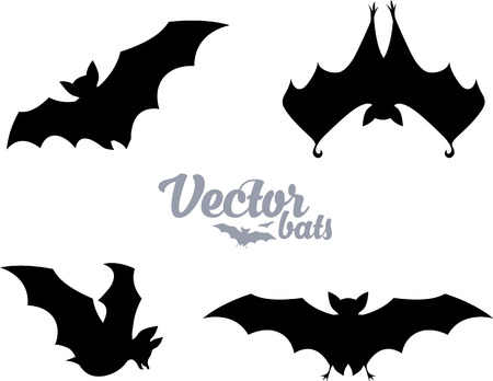 suck blood: Black bats silhouettes vector set isolated on white Illustration