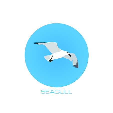 webbed: White vector seagull at blue sky round background Illustration