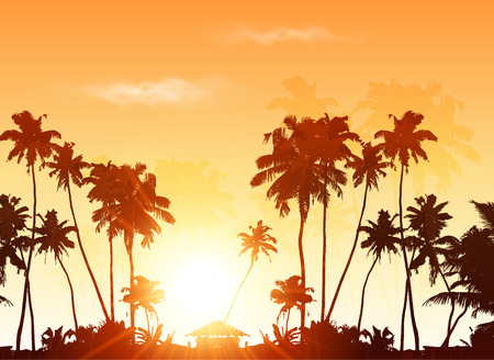 Palms silhouettes at orange sunset sky, vector background Çizim