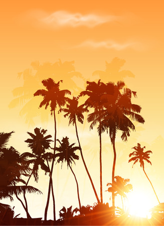 carribean: Orange sunset palms silhouettes vector poster background