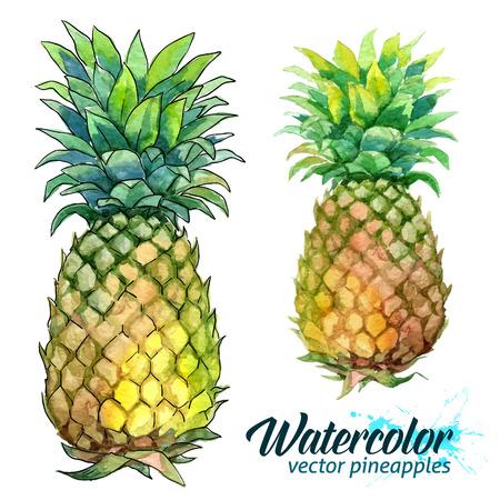 Watercolor painting and dot art imitation vector fresh pineapples