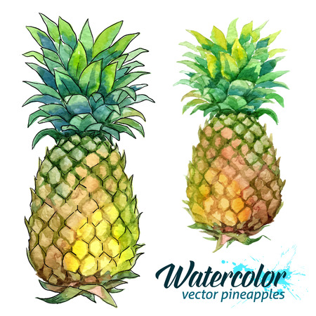 Watercolor painting and dot art imitation vector fresh pineapples